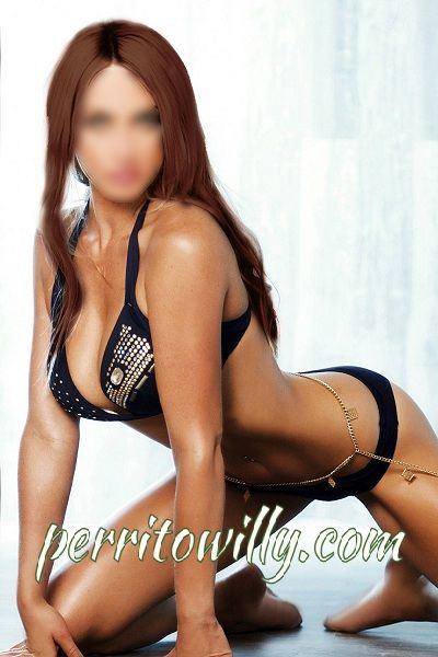ESCORTS MADRID